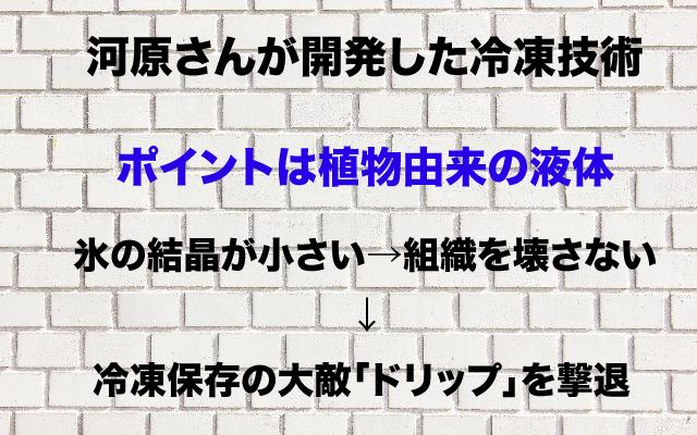 夢の扉|冷凍保存.jpg