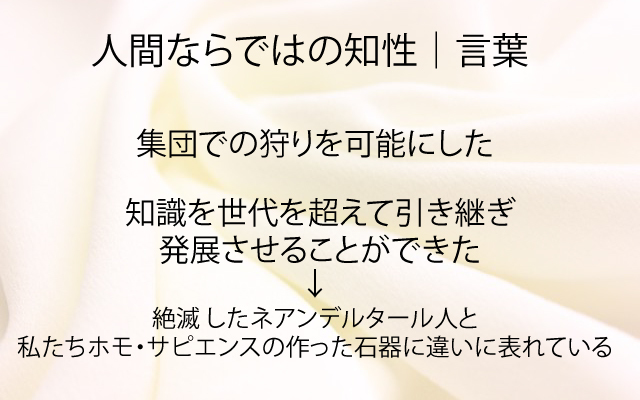 NHKスペシャル|言葉.jpg